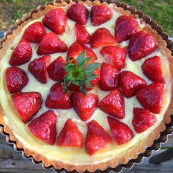 strawberrytartfgts